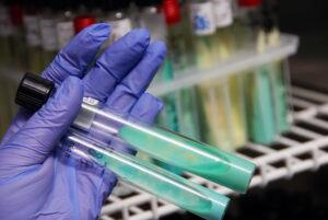 ręka w rękawicy lateksowej z dwoma fiolkami do badania laboratoryjnego